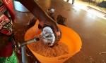 Les élèves en pleine réalisation de la confiture, commencent par râper les cocos
